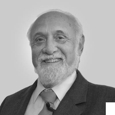 Profilbild von Herrn Prof. Dr. med. Hans-Peter Vogel